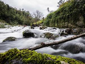 Retiro Natureza Monverde